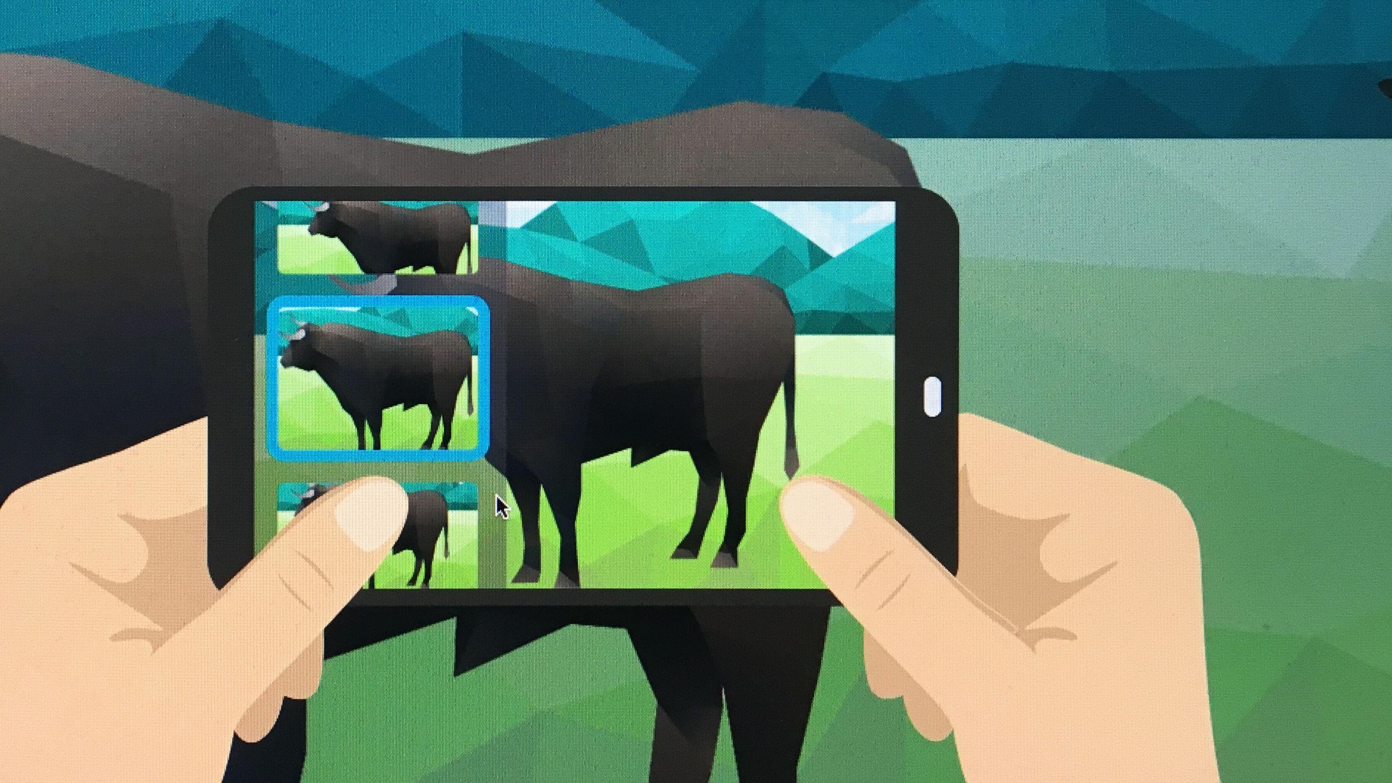 Innovation: Rinder wiegen leicht gemacht