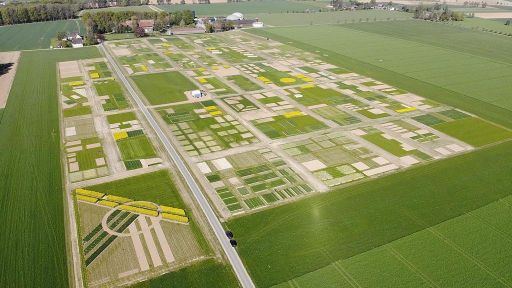 DLG-Feldtage auf Gut Brockhof